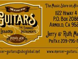 Mercer Biz card