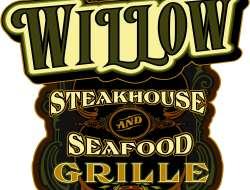 Willow logo to Pat